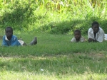 A common sight - people lying in the grass