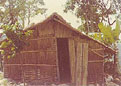 bamboogates