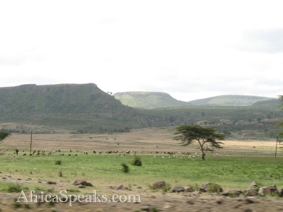 Plateaued mountain tops with savannah foreground