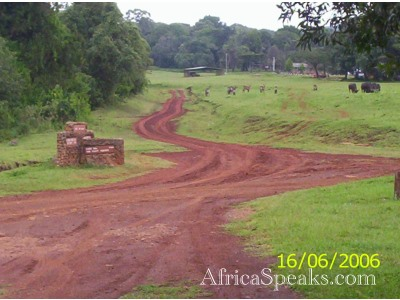 Kitale Road on the way back from Mt. Elgon