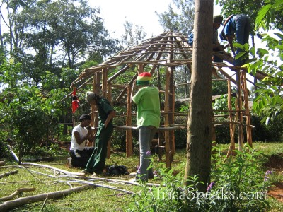 Building a Traditional Hut