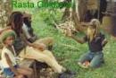 Highlight for Album: Rasta Guidance